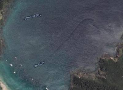 News video: Google Earth May Have Discovered A Mystery Creature In New Zealand